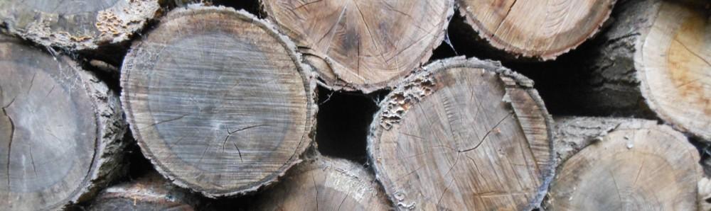Bois chauffage normandie